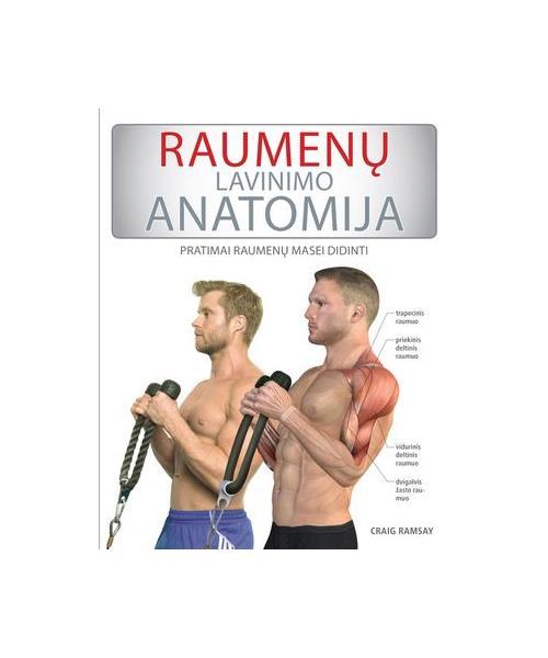 Raumenų lavinimas: pratimai raumenų masei didinti