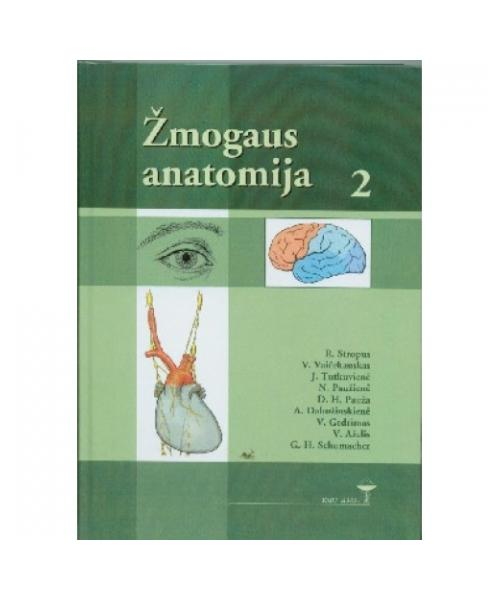 Žmogaus anatomija, 2 tomas
