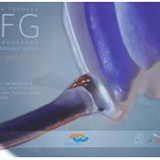 Основы техники AFG моделирование искусственных зубов