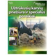 Užtrūkusių karvių priežiūra ir specialūs poreikiai